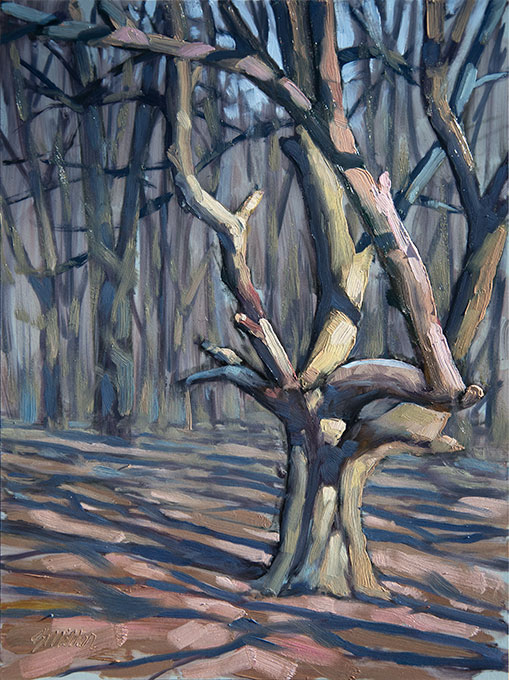 The Woods oil on panel