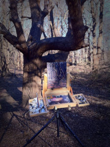 Plein Air Paint Box setup